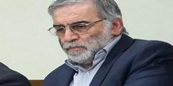 رئیس شورای استان کرمانشاه شهادت دانشمند هسته ای کشورمان را تسلیت گفت