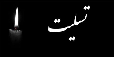 پیام تسلیت دکتر احمدی به مدیرکل روابط عمومی و امور بین الملل شورای عالی استانها