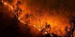 جزئیاتی از آتش سوزی مناطق حفاظت شده کهگیلویه و بویراحمد