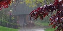 بارش باران در تهران و ۱۶ استان دیگر/ وضعیت جوی دو روز آینده