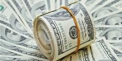 ارز 4200 تومانی به سفره مردم نرسید/ حمایت از اقشار کمدرآمد با پرداخت یارانه مستقیم