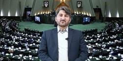 شوراها در زمینه نظارتی و قانون گذاری به مجلس و دولت کمک کنند